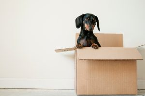 tips for making your move smoother